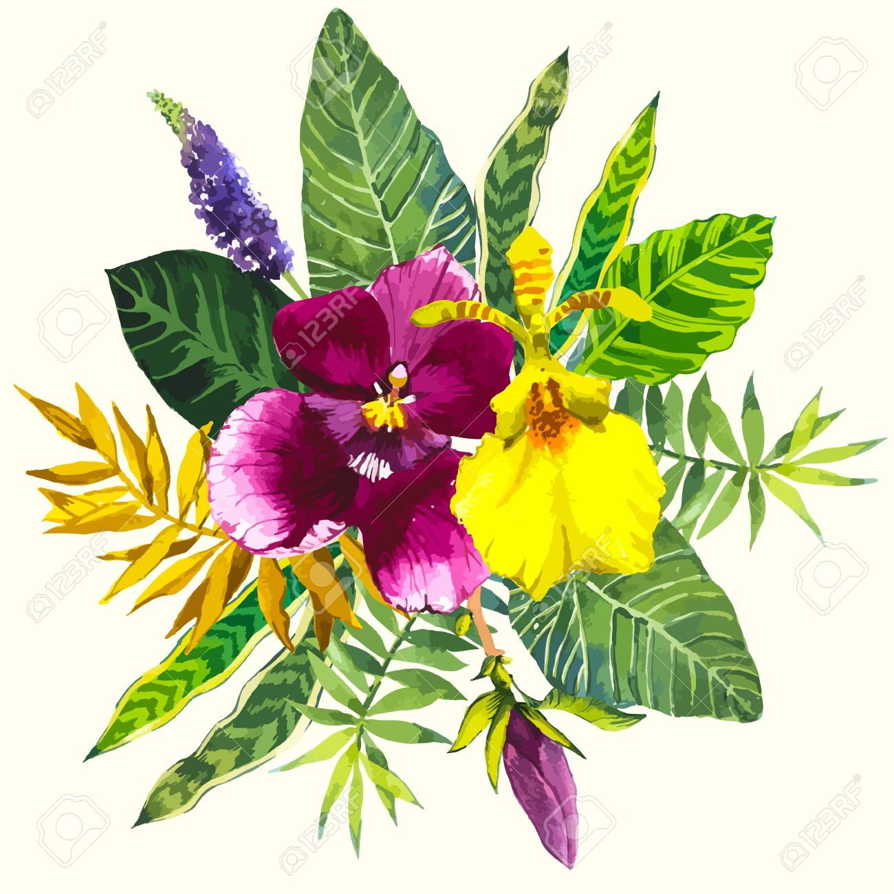 Beautiful bouquet tropical flowers and plants on white background beautiful bouquet tropical flowers and plants on white background composition with yellow and violet orchid izmirmasajfo Gallery