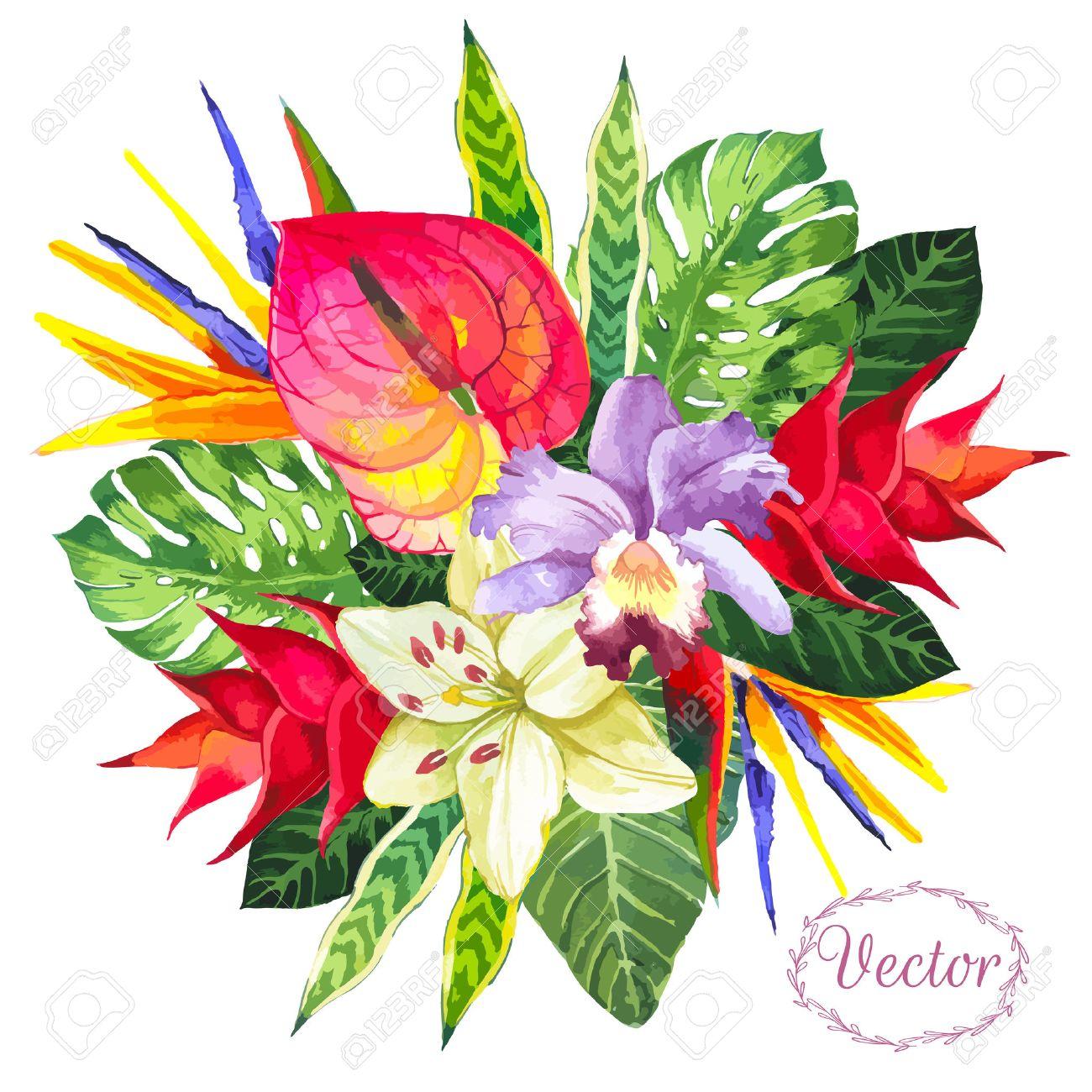 dessin fleur tropicale Beau bouquet de fleurs et de plantes tropicales sur  fond blanc.