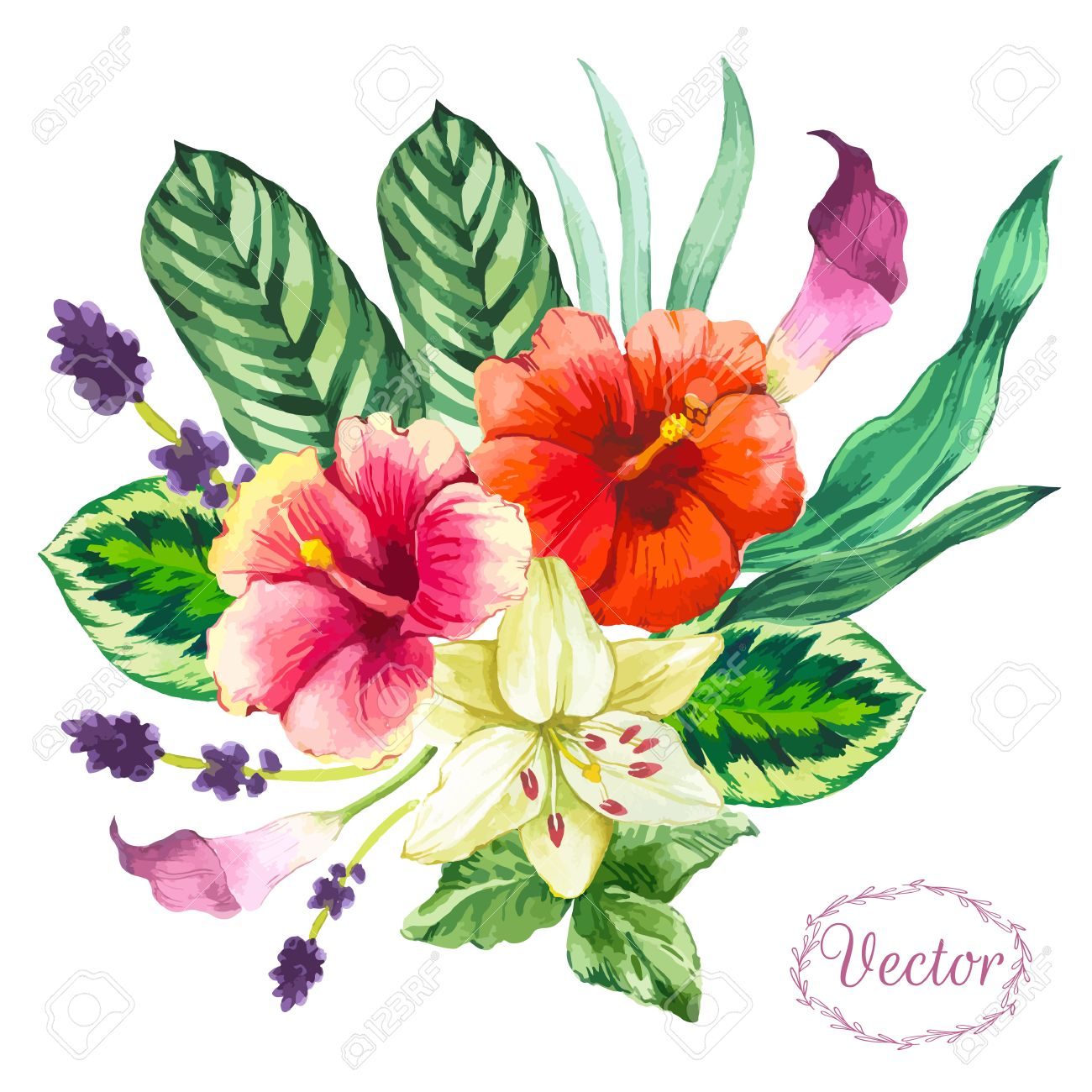 Beautiful bouquet tropical flowers and plants on white background beautiful bouquet tropical flowers and plants on white background composition with monstera and palm leaves mightylinksfo