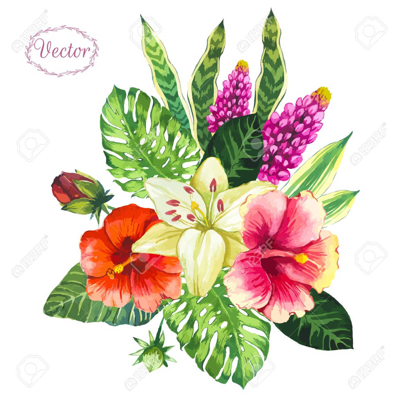 Beautiful Bouquet Tropical Flowers And Plants On White Background ...