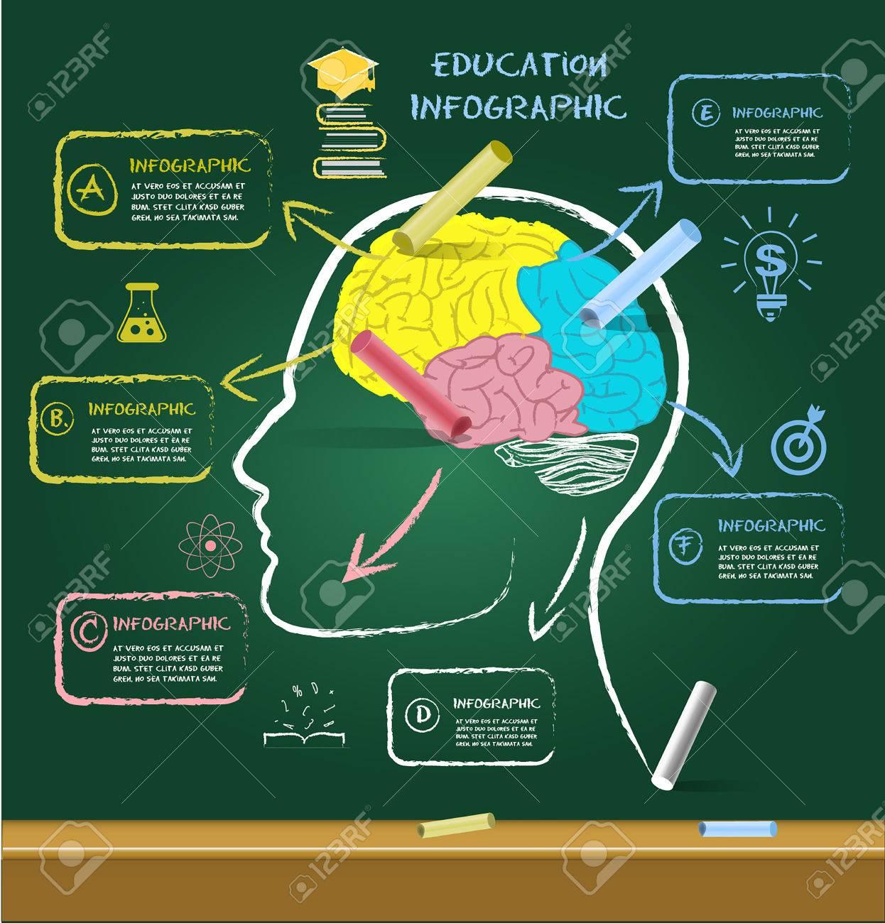 Cerebro De Dibujo Para La Educación Con Tiza En Chalkboard.can ...