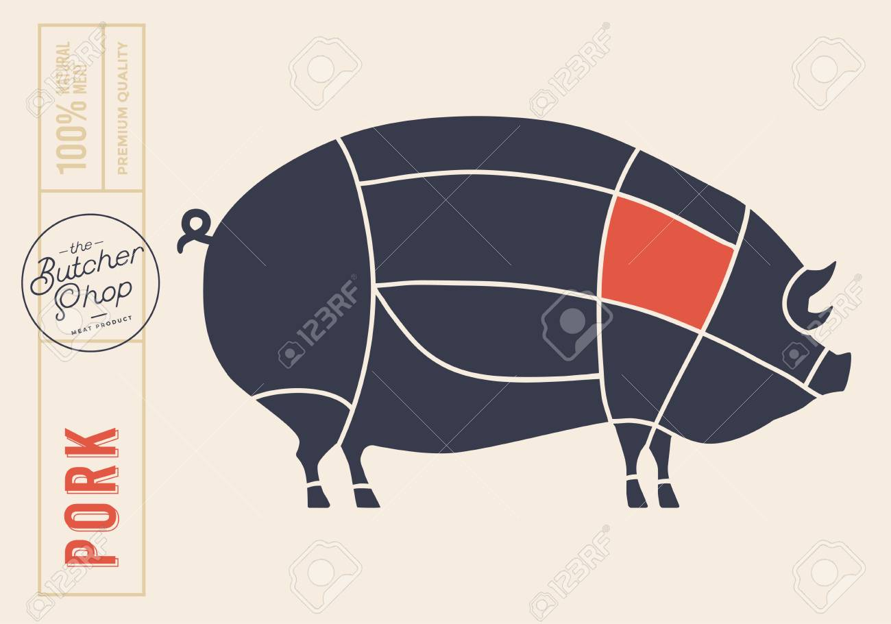 80948279 meat cuts diagrams for butcher shop scheme of pork animal silhouette pork vector illustration meat cuts diagrams for butcher shop scheme of pork animal