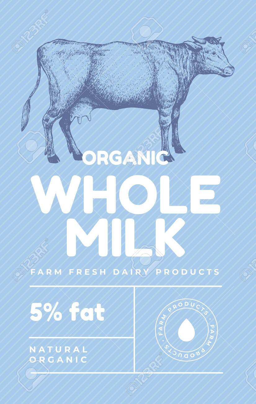 Hand drawn cow in the technique of engraving. Template for logo, emblem in vintage style for dairy stores with high quality food. Design dairy products for farmers markets. Vector retro illustration. - 130227983