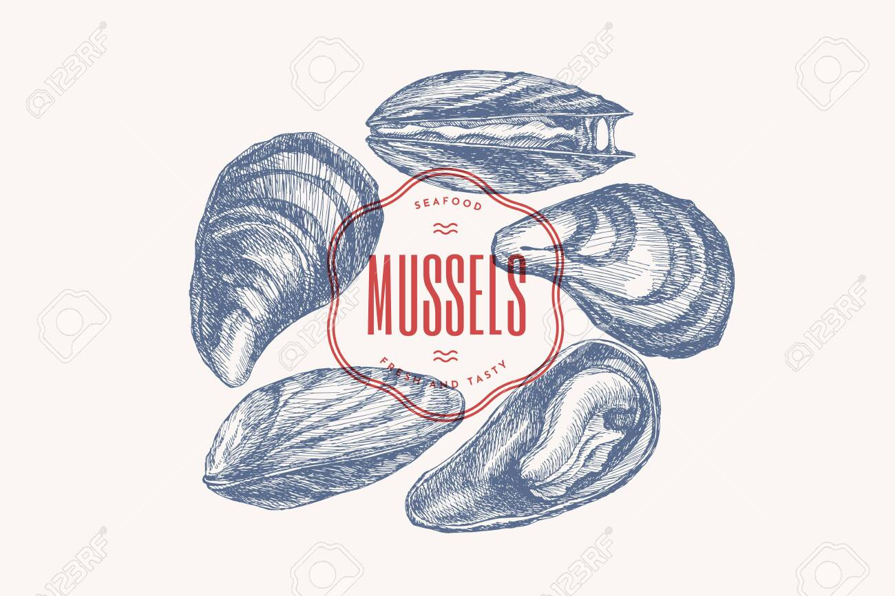 Hand-drawn set of mussels in different foreshortening vector illustration. Seashells in engraving style on a light background. Seafood. The menu design element of a fish restaurant, market or store. - 149452453