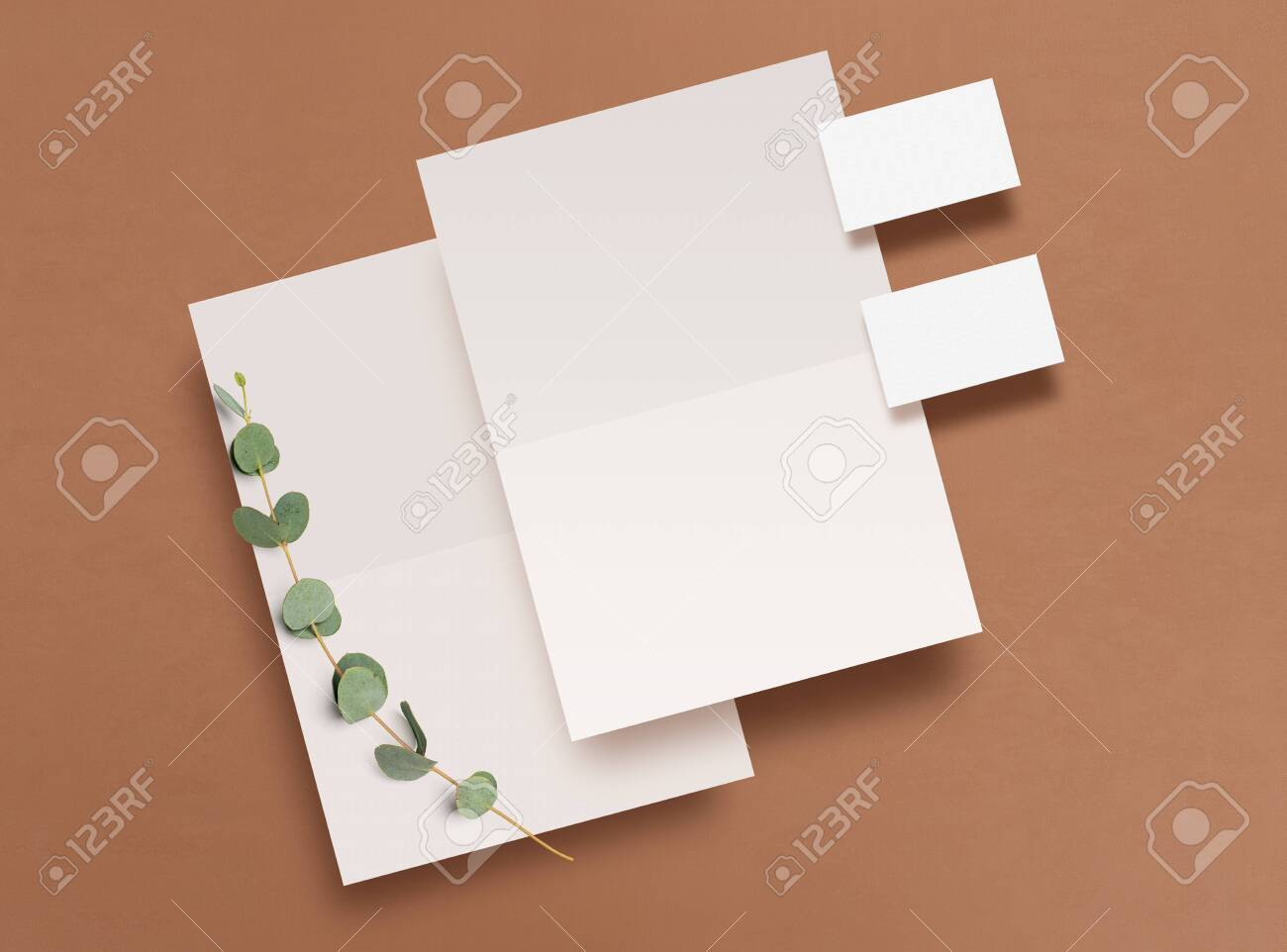 Mockup. Empty blank, business card and a branch of eucalyptus on a brown background. Template for corporate identity. Empty objects to place your design. Flat lay. Top view. 3D illustration. - 149198566