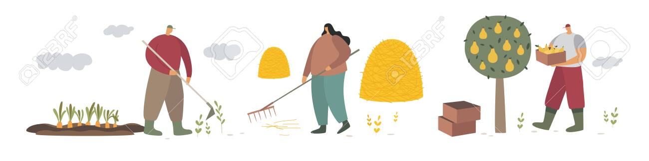 A group of farmers engaged in agricultural activities. Work and cleaning in the garden. People working in the field. Farmland. Trendy flat vector illustration. - 151370635