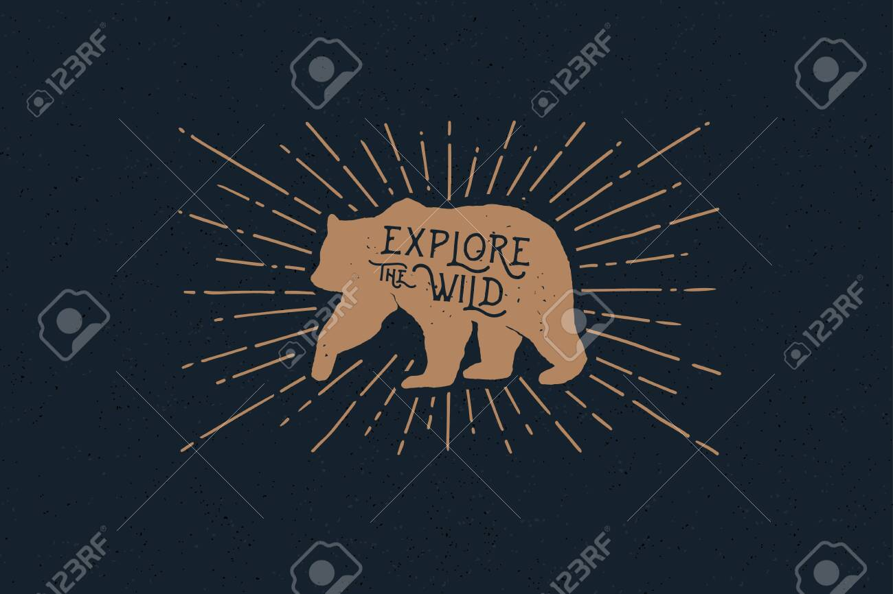 Hand drawn bear with an inscription explore the wild nature in the rays of light. Vintage label on the theme of the study of wildlife. Monochrome style. - 151407078