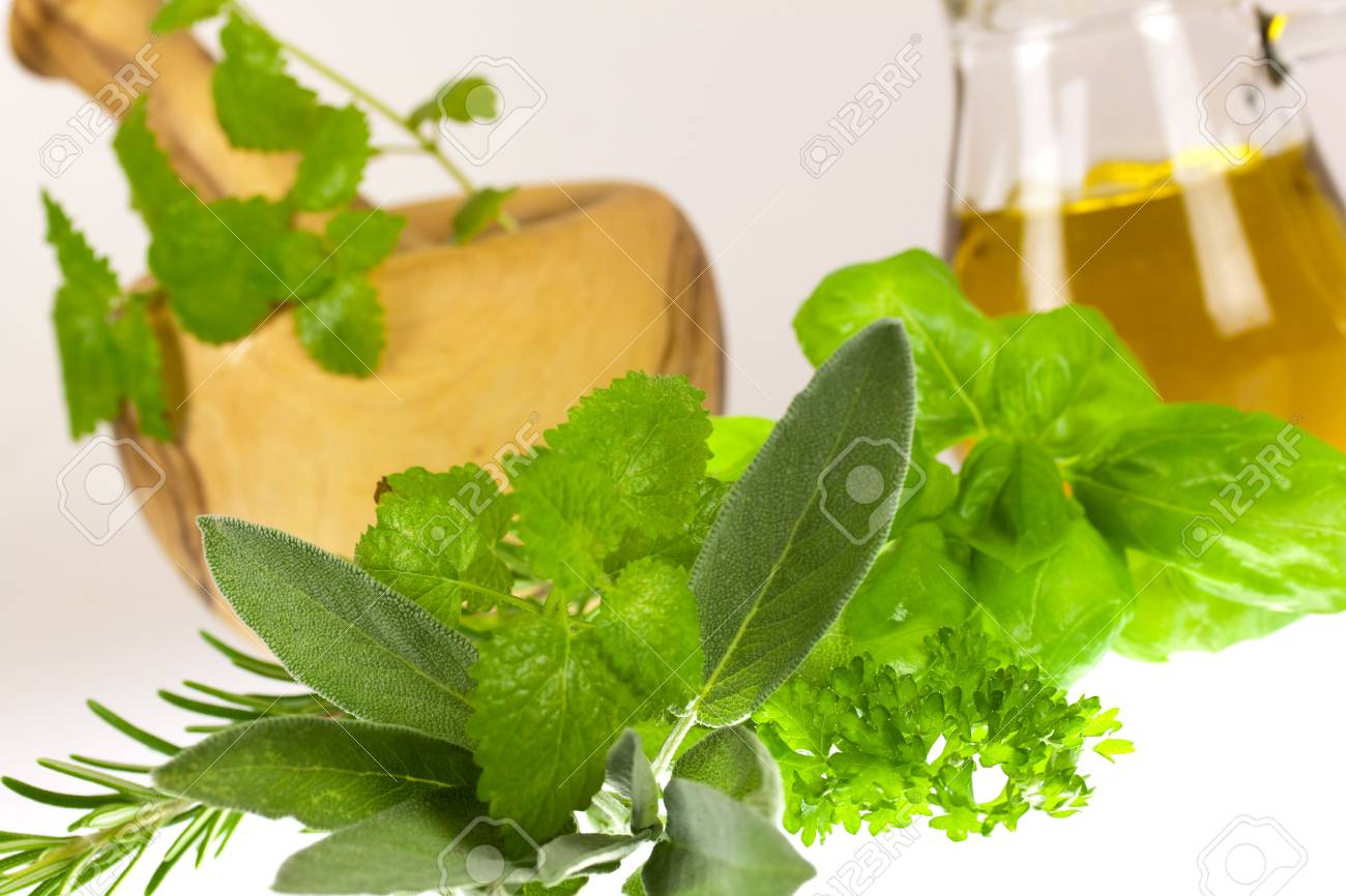 Sage,Basil,Parsley and Mint,isolated on white Stock Photo - 5539049