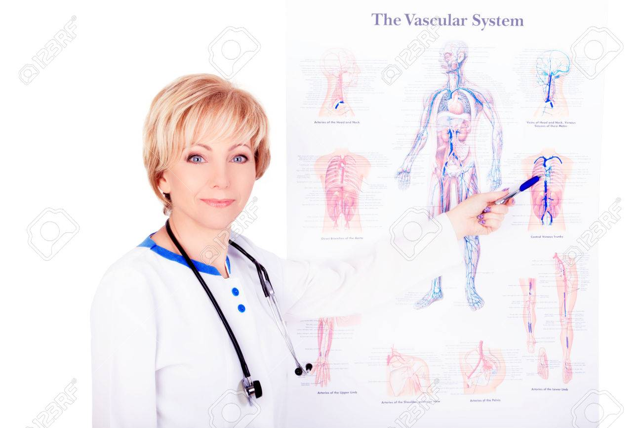 Smiling Doctor Wearing A Stethoscope Pointing At The Vascular