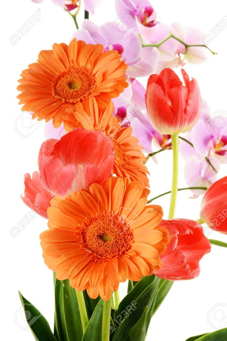Flower bouquet Stock Photo - 9498403