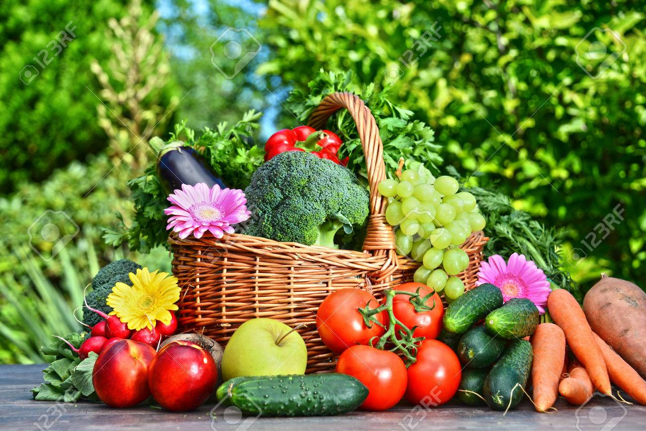 Variety of fresh organic vegetables and fruits in the garden. Balanced diet - 42730118