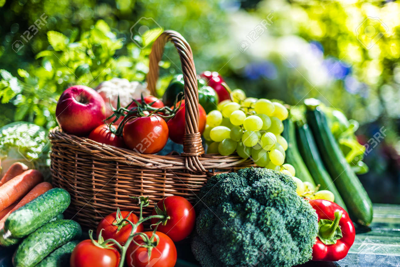 Variety of fresh organic vegetables and fruits in the garden. Balanced diet - 153308209