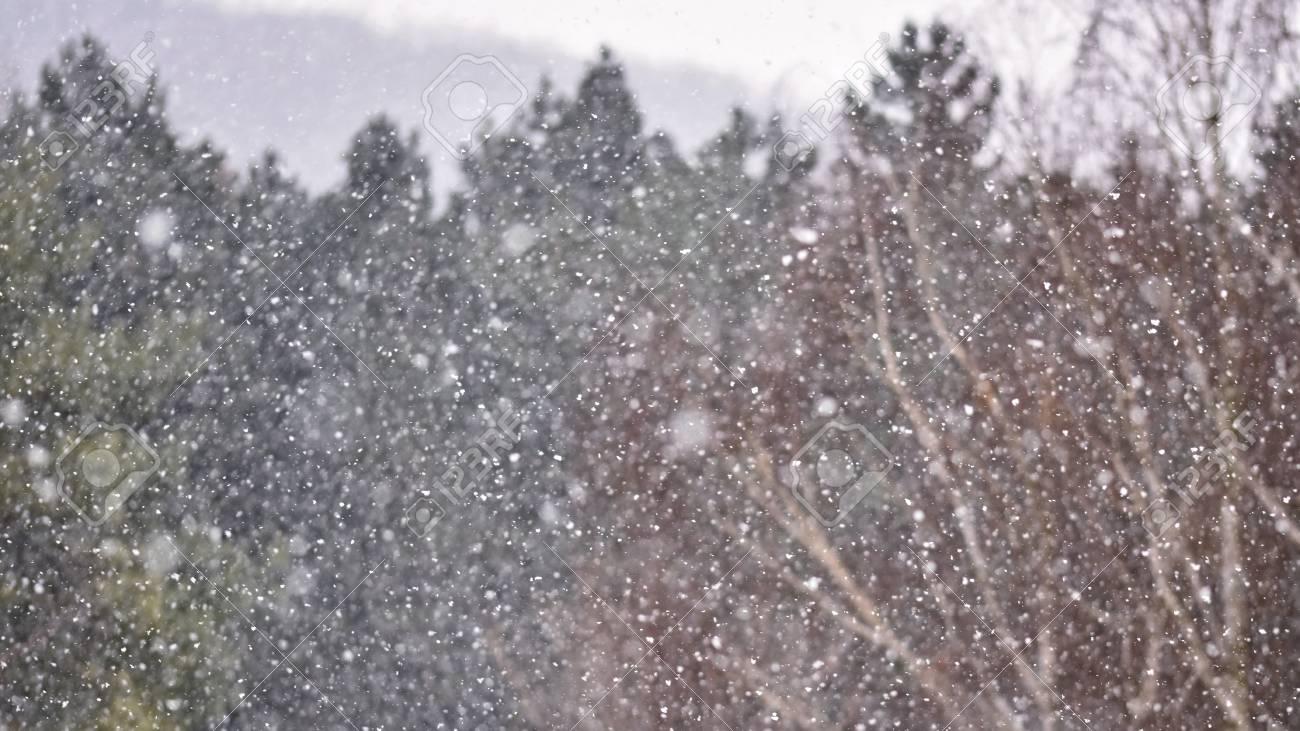 Sfondo con la neve