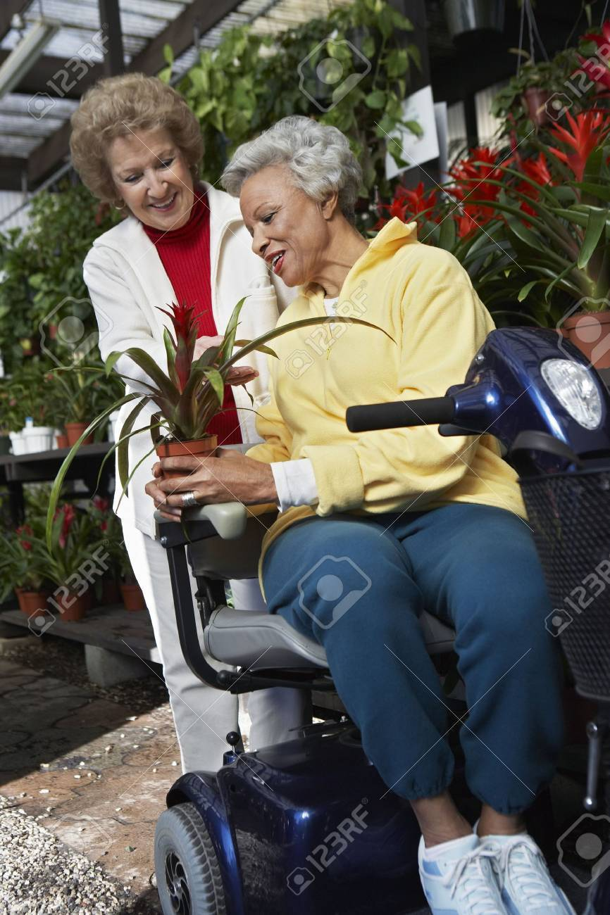 Two senior women in garden center Stock Photo - 3540950