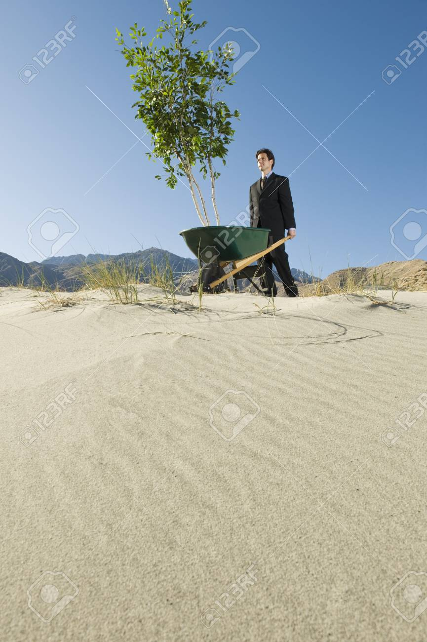 Businessman Pushing Wheelbarrow and Tree in the Desert Stock Photo - 12735188
