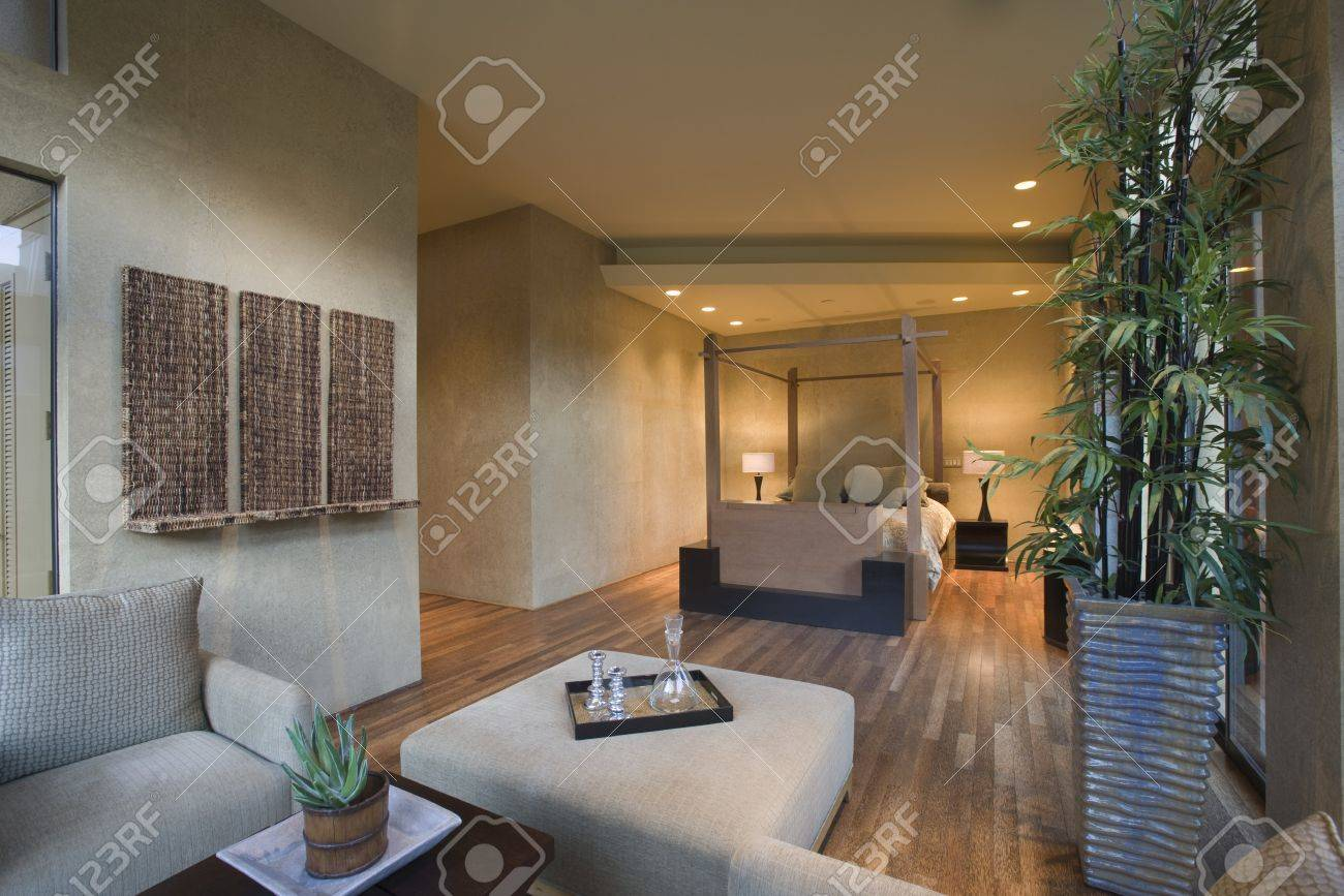 spacious living room interior with bamboo houseplant stock photo