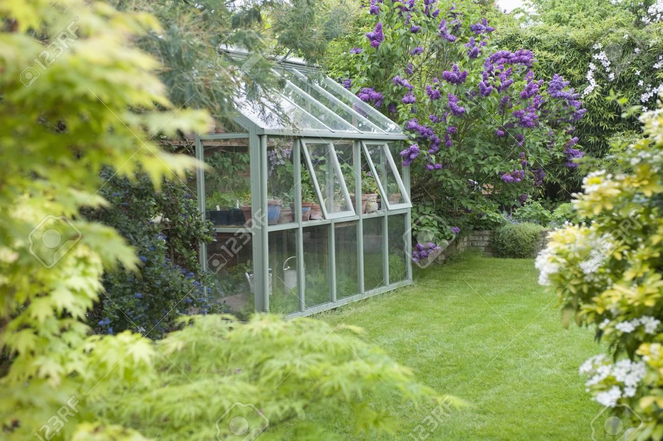 Gewachshaus In Hintergarten Mit Offenen Fenstern Zur Beluftung