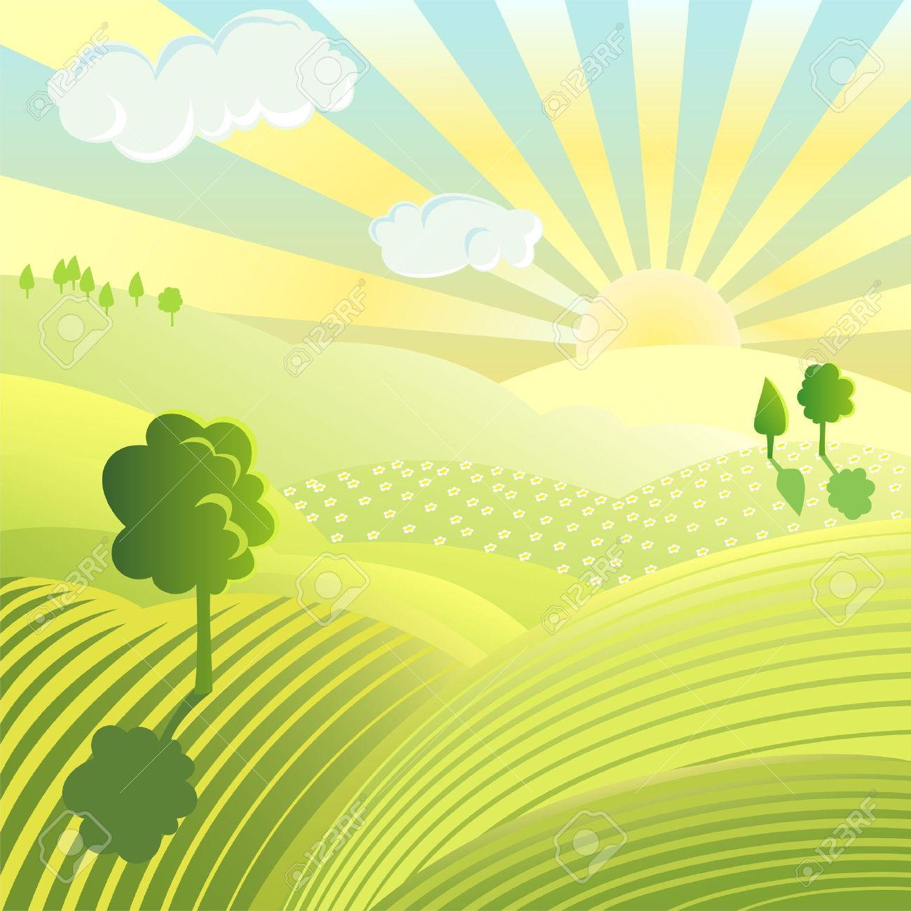 Beautiful landscape. Rural scene with green field and trees on sunny day - 11152671