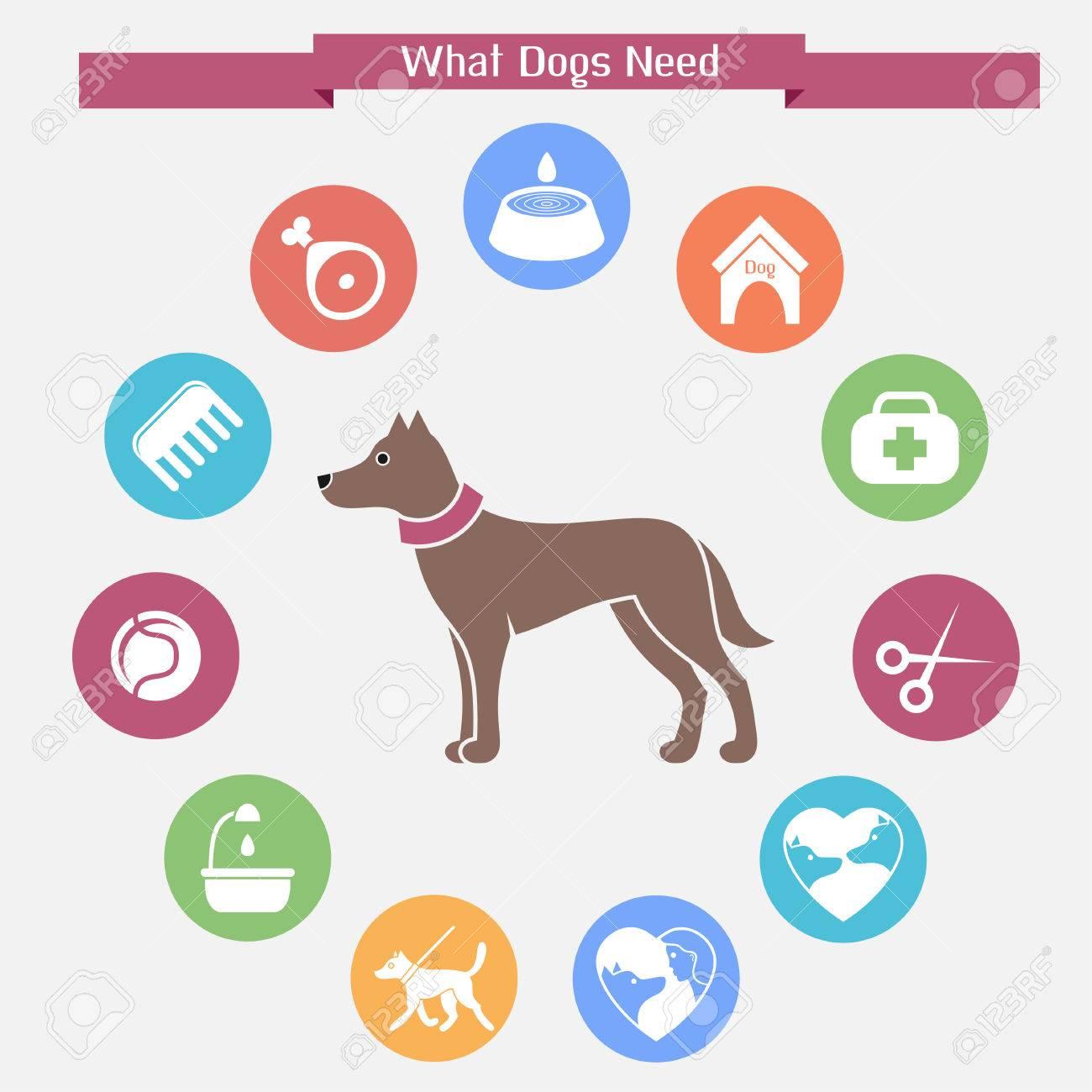 Dog infographics and icon set - 33353750