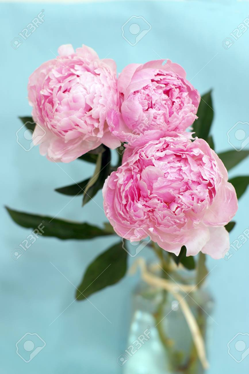 Blossoming peony flowers in a bouquet of gently pink color stand blossoming peony flowers in a bouquet of gently pink color stand in a vase with water izmirmasajfo