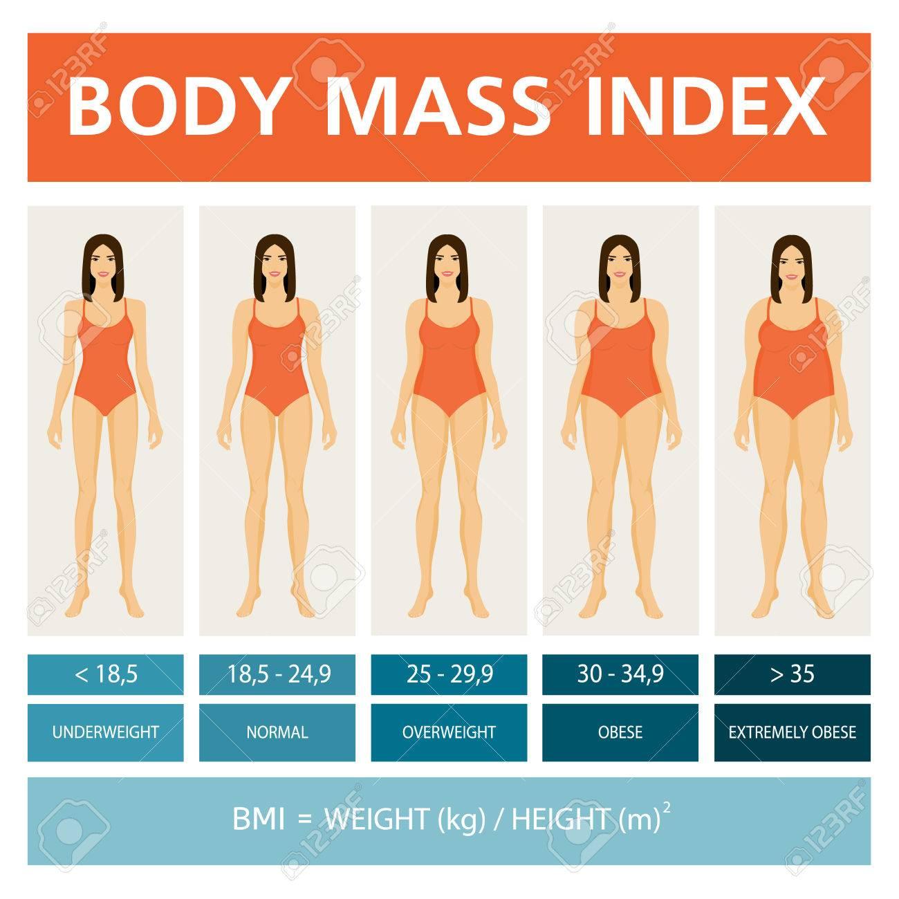 Ilustración De índice De Masa Corporal Con Figuras De Mujeres ...