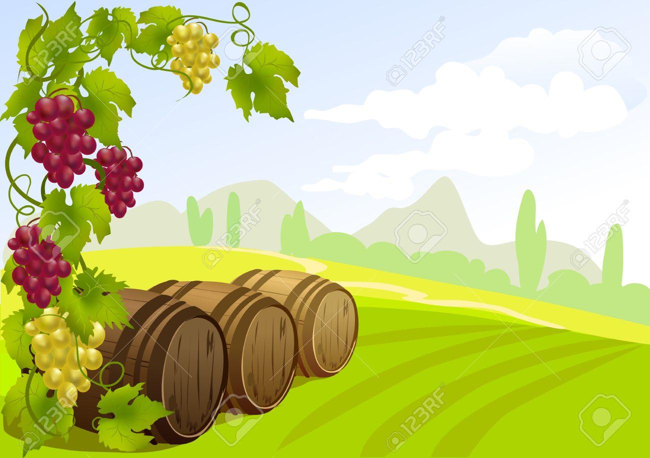 grapes, barrels and rural landscape. vector illustration Standard-Bild - 26233799