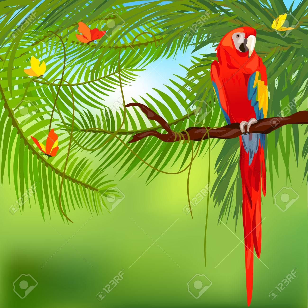 rainforest and parrot. Standard-Bild - 29777661