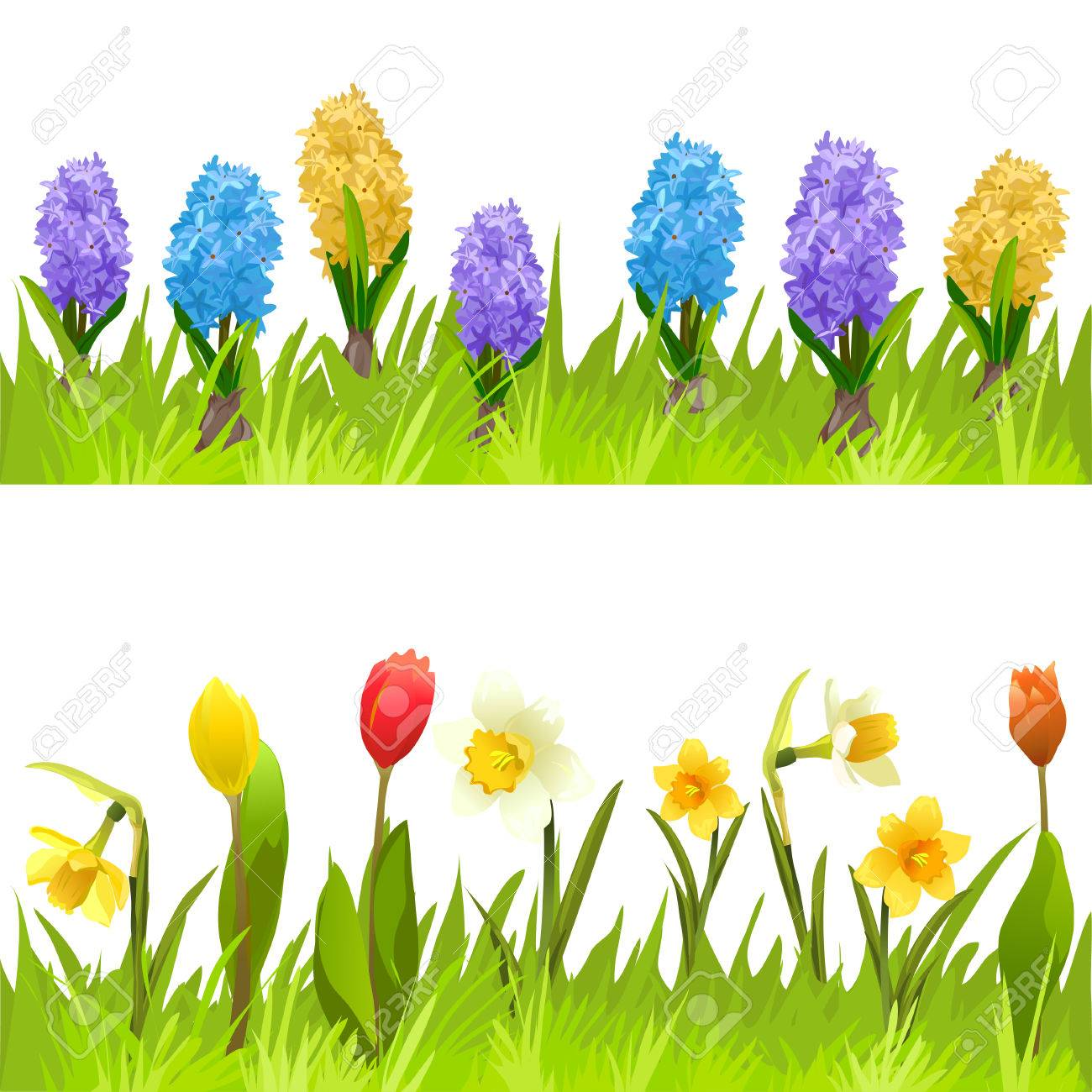 Banners With Spring Flowers Tulips Daffodils And Hyacinths