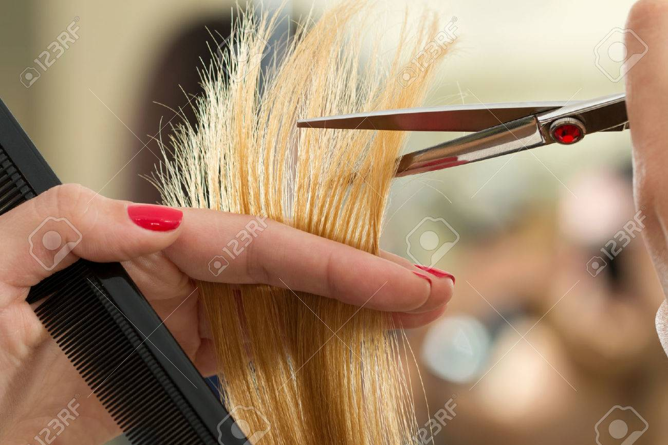 Close up view of female hairdresser hands cutting hair tips. Keratin restoration, healthy hair, latest hair fashion trends, changing haircut style, shorten split ends, instrument store concept - 66205377