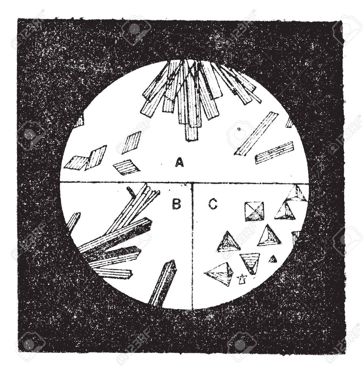 Fig. 3. A. Crystals of hemoglobin in the blood of man. B. Crystals of hemoglobin of the cat. C. Crystals of hemoglobin of the blood of guinea pigs, vintage engraved illustration. Dictionary of words and things - Larive and Fleury - 1895. Stock Vector - 13770982