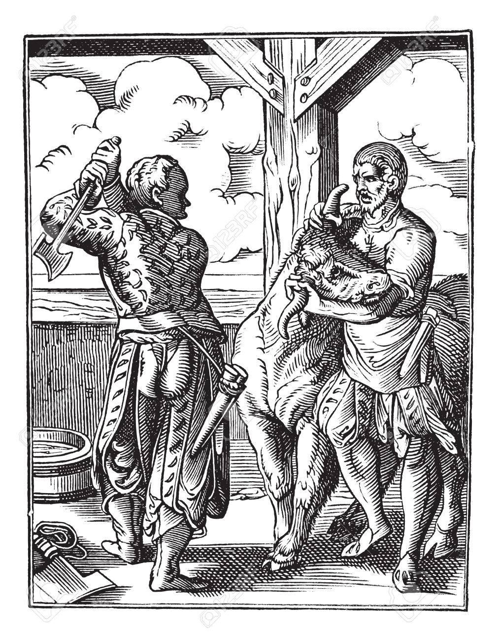 Fabriquer Valet De Chambre old gravé illustration de boucher avec son valet de chambre se apprête à  abattre un animal (xviiie siècle). encyclopédie industrielle e.-o. lami -