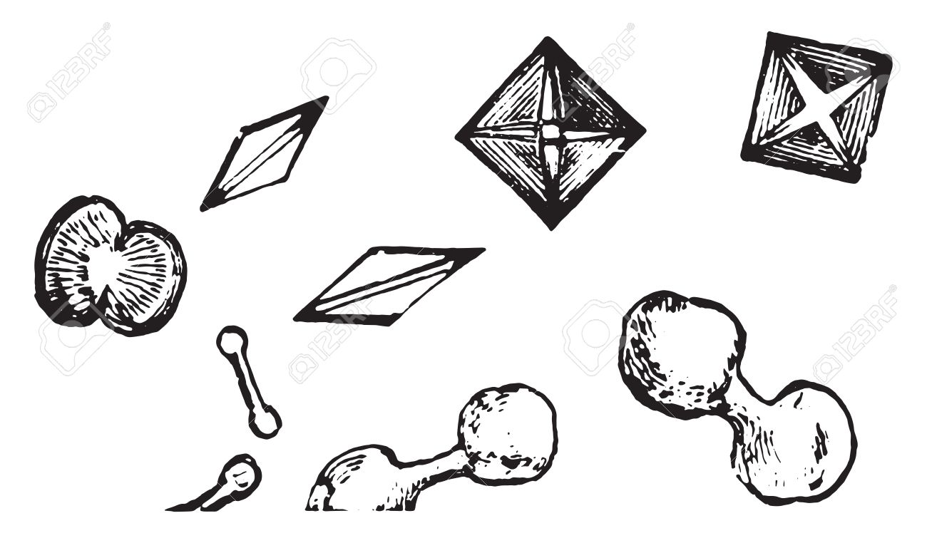Dumbbell and octadehdral crystals of calcium oxalate vintage dumbbell and octadehdral crystals of calcium oxalate vintage engraved illustration stock vector 41718351 buycottarizona Choice Image