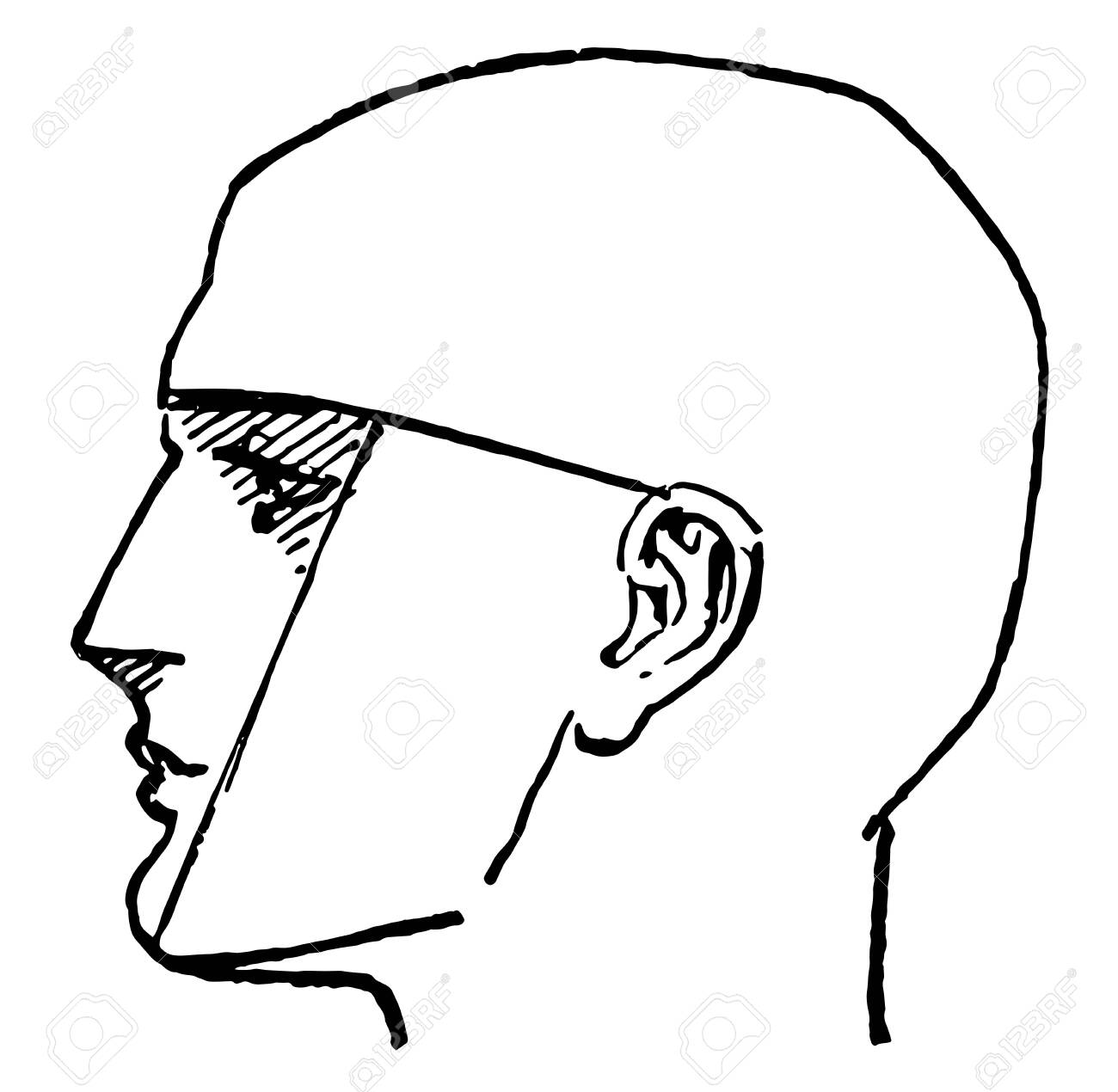 Side Profile Of A Male Face In This Picture Vintage Line Drawing Royalty Free Cliparts Vectors And Stock Illustration Image 133111006
