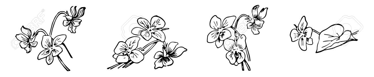 Best Flower Clipart Black And White #13578 - Clipartion.com