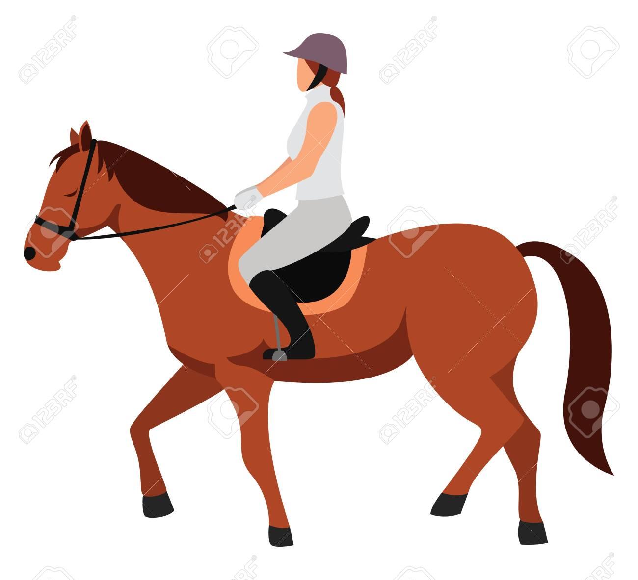 Horseback Riding Illustration Vector On White Background Ilustraciones Vectoriales Clip Art Vectorizado Libre De Derechos Image 152562843