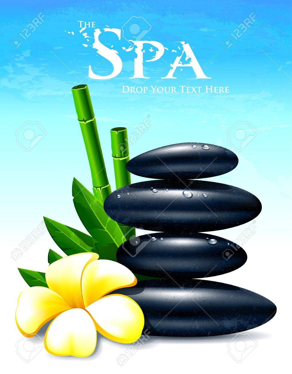 Spa Vector Illustration With Zen Stones Flower And Leafs Royalty Free Cliparts Vectors And Stock Illustration Image 14470117