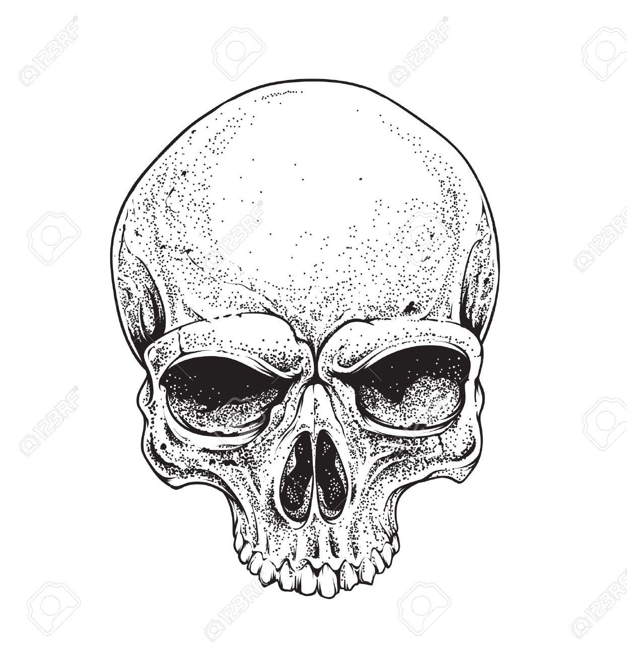 dotwork styled skull vector art royalty free cliparts vectors and rh 123rf com skull vector free for commercial use skull vector free for commercial use
