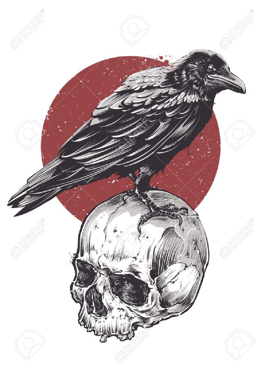 Cuervo Imagen Del Cráneo Del Grunge Sucesivamente. Dibujado A Mano ...