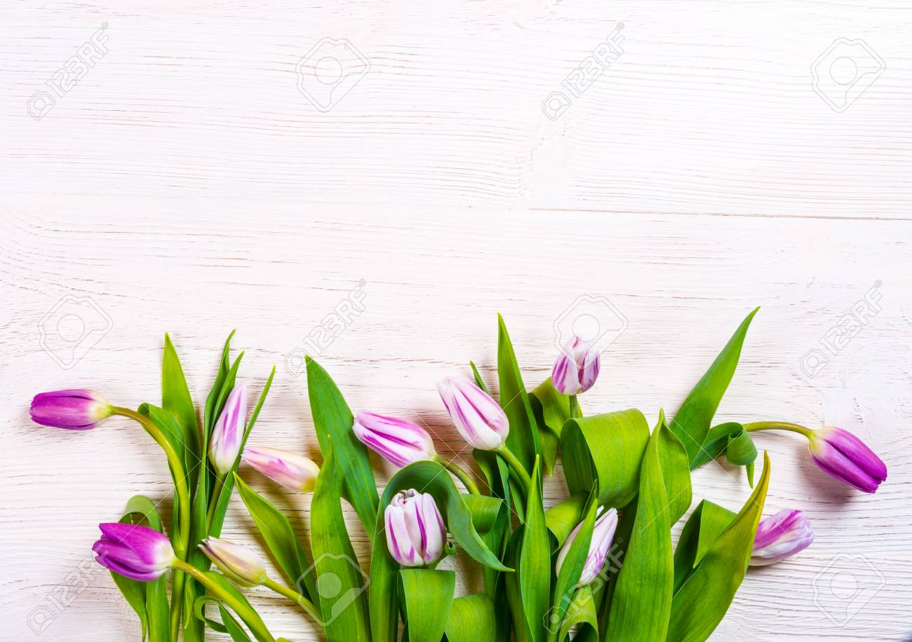 Spring Flowers Background Bunch Of Tulip Flowers On White Wooden