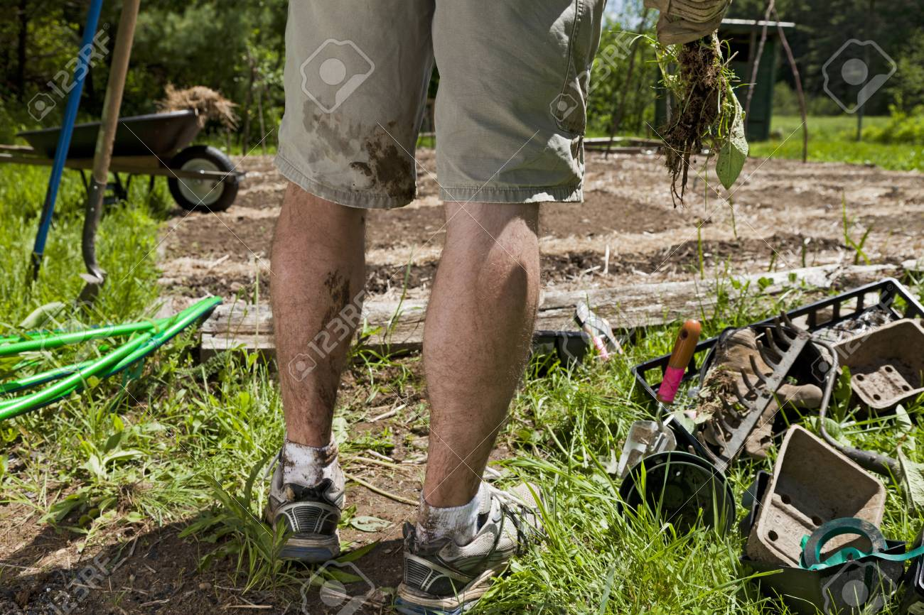 A Young Man S Legs Are Dirty After Gardening Stock Photo, Picture ...