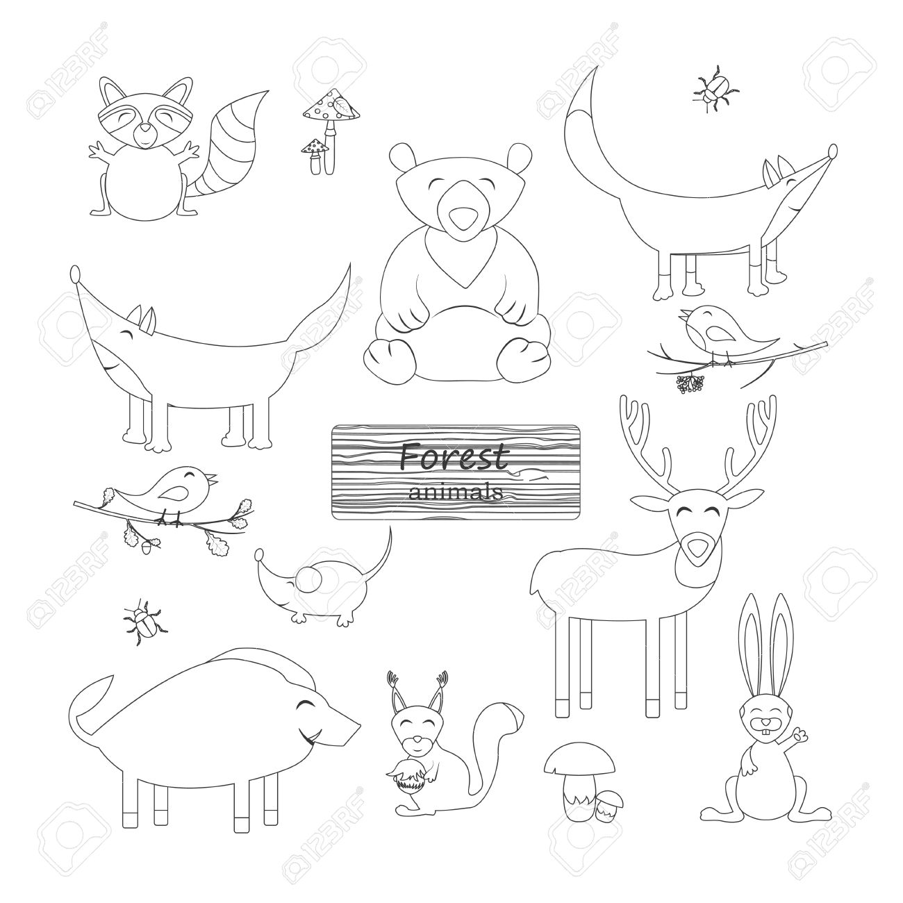 Coloring Book Forest Animals