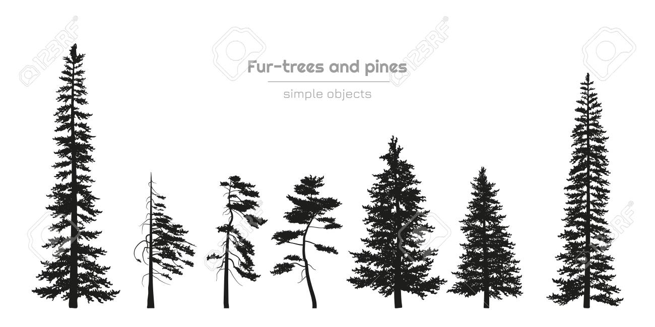 Black Silhouettes Of Fur Trees And Pines Forest Landscape Isolated Royalty Free Cliparts Vectors And Stock Illustration Image 109983183
