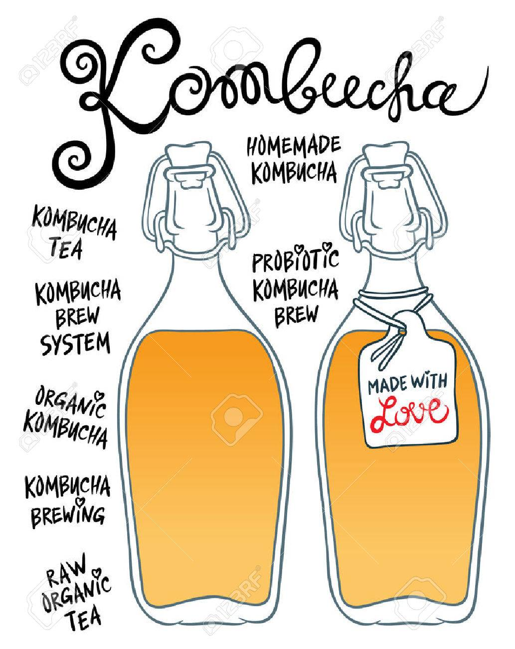 Kombucha or Hongo in glass bottles - Natural homemade healthy drink for health - hand drawing vector illustration - 51040672