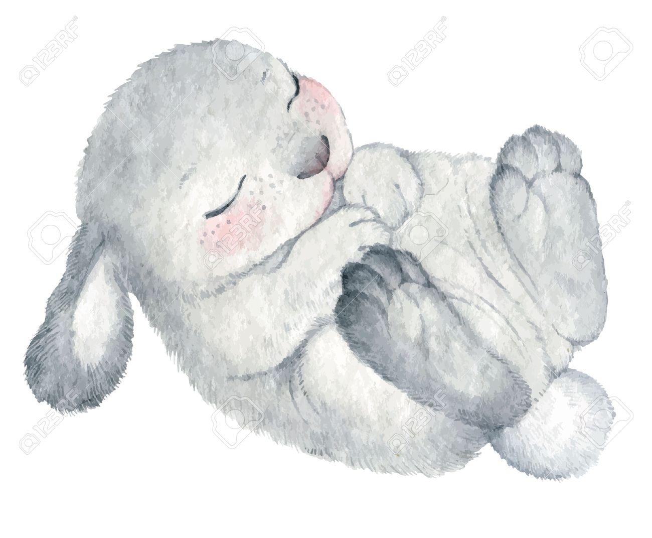 cute rabbit vector watercolor hand drawing sketch Illustration Banque d'images - 51155943