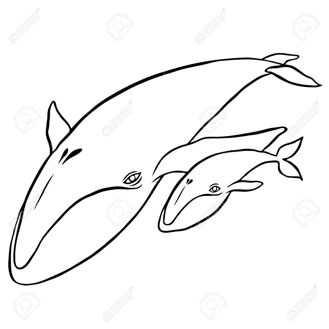 Dibujo Ballena. Beautiful Ballena Ballenagif. Simple Ballena Azul ...