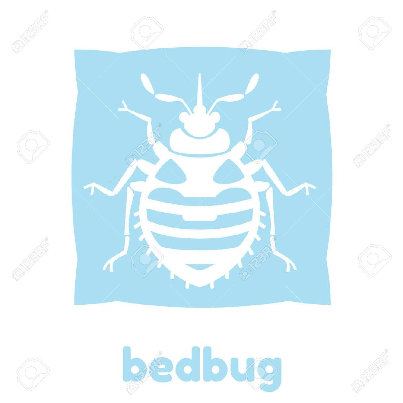 Home bedbug vector illustration - set of household pests in pure style - 51169491