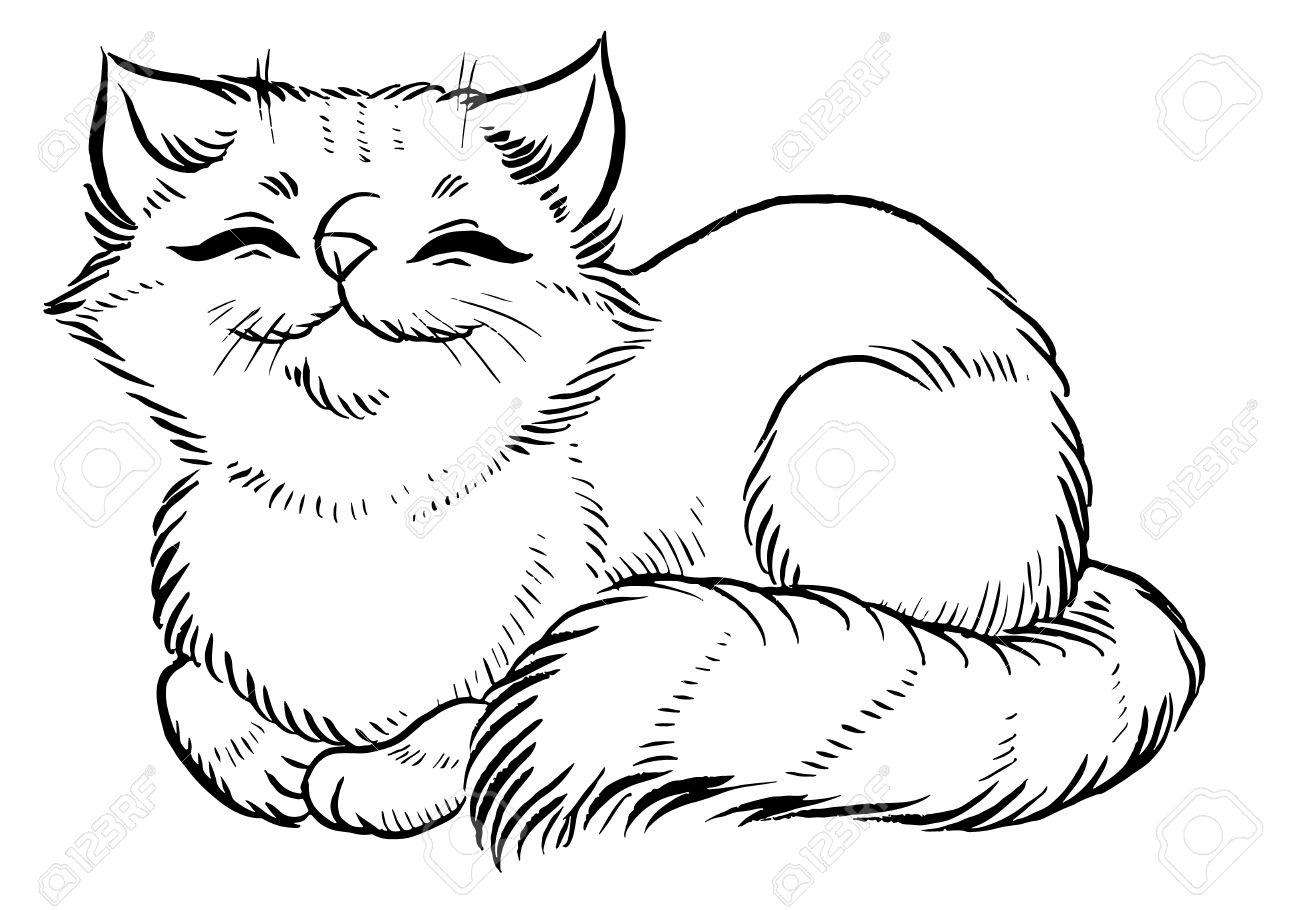 Fluffy Cat Comfortably Sleeps Cartoon Cute Cat Character Vector Illustration Royalty Free Cliparts Vectors And Stock Illustration Image 51197886