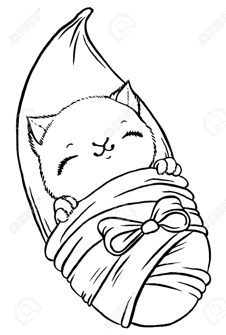 cute baby kitten wrapped in blanket like newborn vector isolated