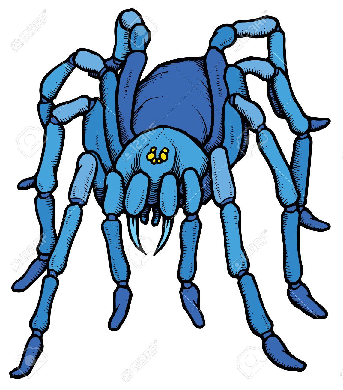 Estilizado Dibujo Animado Azul Tarántula - Ilustración Vectorial ...