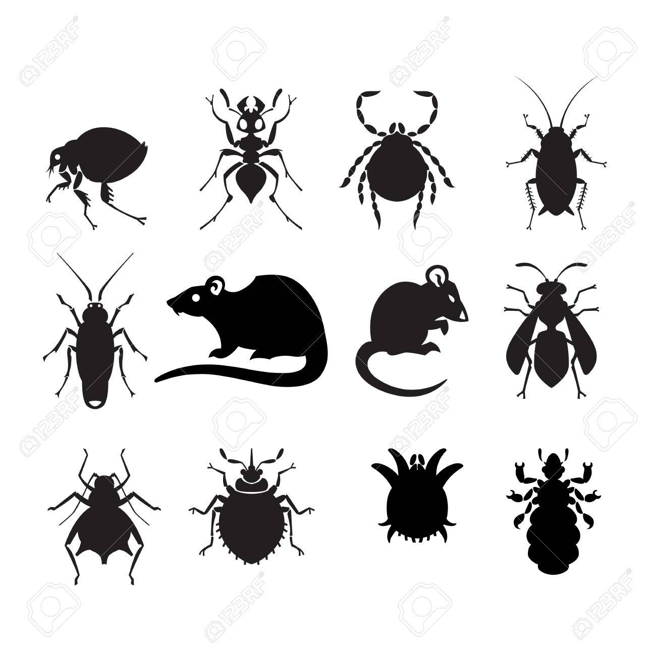 different cartoon or symbolic picture animals - set of household pests in pure vector style - 51903795